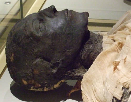 The mummy of seti i source the children s museum of indianapolis