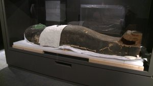 The coffin of Gemshuankh (Source: Newsfix).